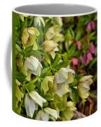 White/pink Lenten Roses Coffee Mug