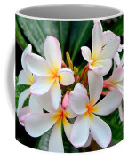 White Plumeria - 1 Coffee Mug