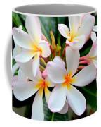 White Plumeria - 2 Coffee Mug