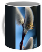 White Pussy Willow In Bloom Coffee Mug