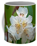 White Rhododendrons Coffee Mug