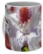 White Rhododrendon Coffee Mug
