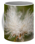 White Seedhad Of Mountain Avens Coffee Mug