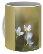 White Serenity Coffee Mug