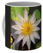 White Star Lotus Coffee Mug