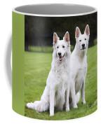 White Swiss Shepherd Dogs Coffee Mug