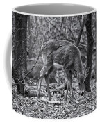White-tail Deer Coffee Mug