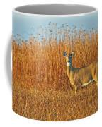 White Tailed Deer In Morning Light Coffee Mug