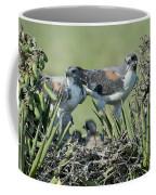 White-tailed Hawk Family Coffee Mug