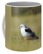 White Tailed Kite Coffee Mug