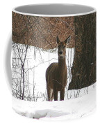 White-tailed Winter Stand  Coffee Mug