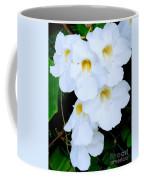 White Thunbergia On The Fence Coffee Mug