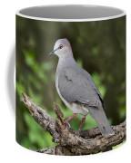 White-tipped Dove Coffee Mug