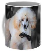 White Toy Poodle Coffee Mug