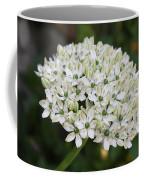White Umbel Coffee Mug