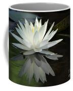 White Water Lily Reflections Coffee Mug