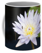 White Waterlily With Fly...   # Coffee Mug