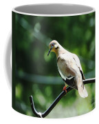 White Winged Dove Coffee Mug
