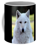White Wolf Close Up Coffee Mug