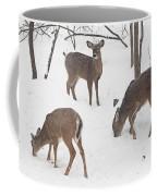 Whitetail Deer In Snowy Woods Coffee Mug