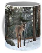 Whitetail In Woods Coffee Mug