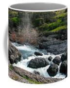 Whitewater At Bear Hole Coffee Mug