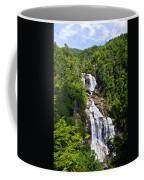 Whitewater Falls Coffee Mug by Susan Leggett