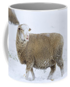 Who Threw The Snowball Coffee Mug