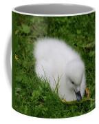Whooper Swan Juvenile  Coffee Mug