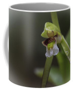 Whorled Pogonia Coffee Mug