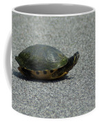 Why Did The Turtle Cross The Road Coffee Mug