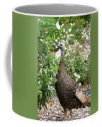 Wide Eyed Wild Coffee Mug