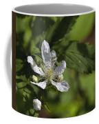 Wild Alabama Blackberry Blossom Coffee Mug