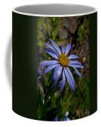 Wild Aster Flower Coffee Mug
