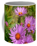 Wild Asters Coffee Mug