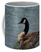 Wild Beauty - Canadian Goose Coffee Mug