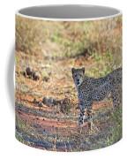 Wild Beauty... Coffee Mug