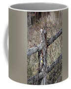 Wild Berries On Fence Coffee Mug