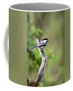 Wild Birds - Black Capped Chickadee Coffee Mug