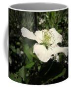 Wild Blackberry Blossom Coffee Mug