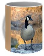 Wild Canadian Goose Coffee Mug