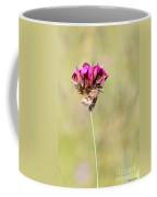 Wild Carnation With Nocturnal Moth Coffee Mug