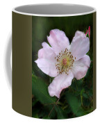 Wild Carolina Rose Coffee Mug