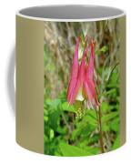 Wild Columbine - Aquilegia Canadensis Coffee Mug