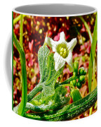 Wild Cucumber In Park Sierra Near Coarsegold-california  Coffee Mug