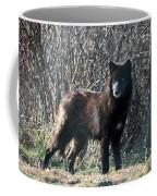 Wild Eyes  Coffee Mug