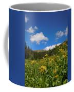 Wild Flowers In Rocky Mountain National Park Coffee Mug