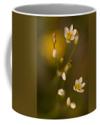 Wild Garlic Coffee Mug