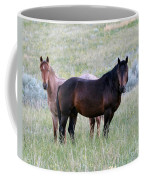 Wild Horses In The Badlands Coffee Mug