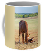Wild Horses Mother And Baby Coffee Mug
